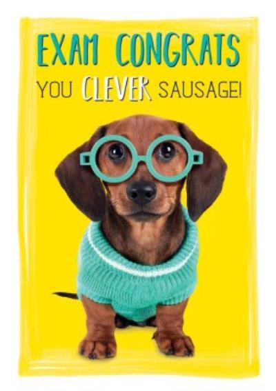 Exam Congrats You Clever Sausage Dog Card