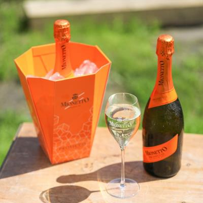 Mionetto Prosecco Ice Bucket Gift Set