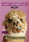 From Your Favourite Drama Llama Funny Mother's Day Card