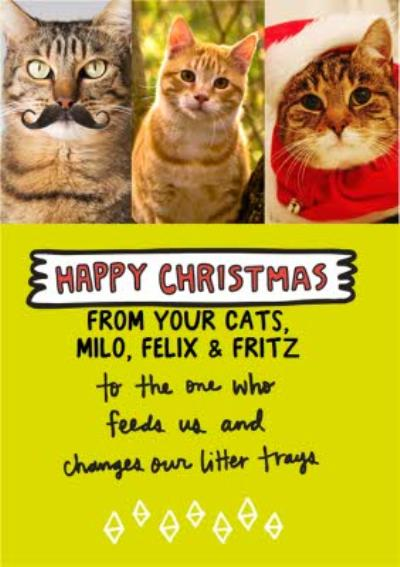 Happy Christmas From The Cats Photo Upload Card