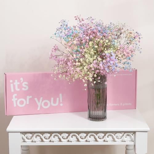 The Letterbox Candyfloss Gypsophilia Moonpig
