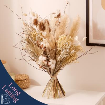 The Dried White Collection