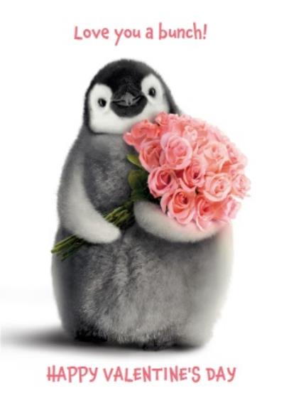 Cute Penguin Love You A Bunch Happy Valentine's Day Card