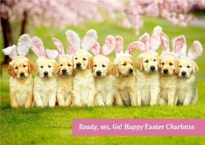Personalised Puppy Easter Bunny Card