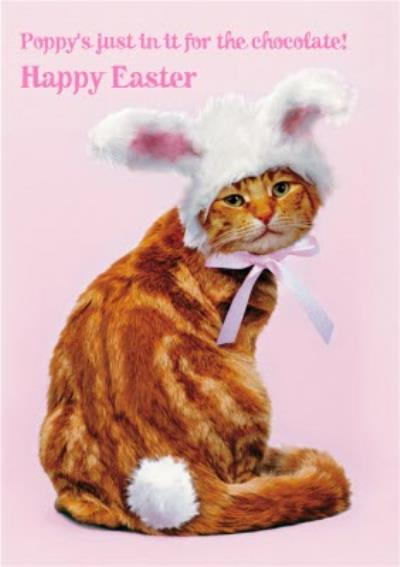 Personalised Kitty Cat Easter Bunny Card