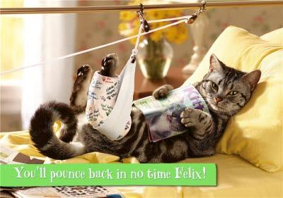Get Well Card - You'll pounce back in no time