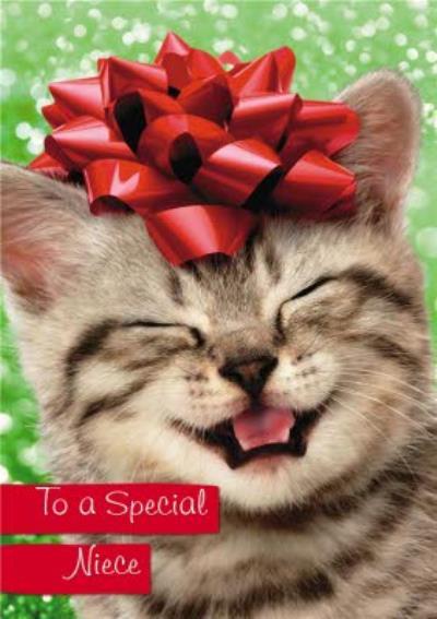 Cute Kitten Niece Christmas card