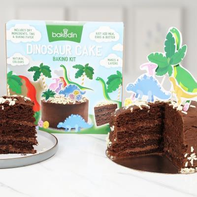 Dinosaur Cake Baking Kit