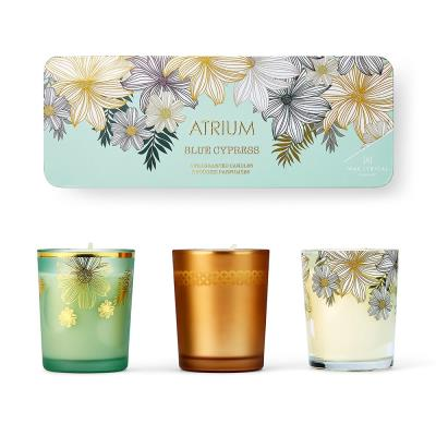 Atrium Votive Candle Gift Set