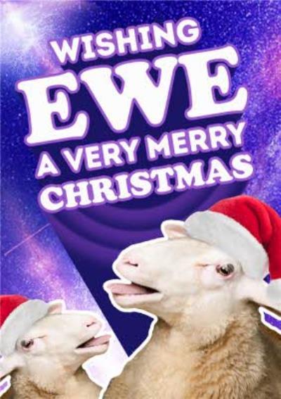 Wishing Ewe A Very Merry Christmas Funny Card