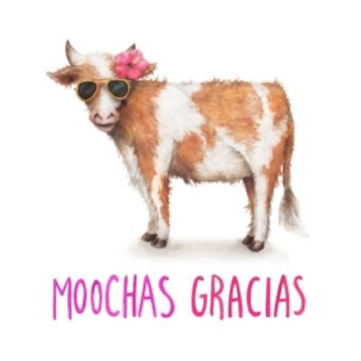 Cow Moochas Gracias Card