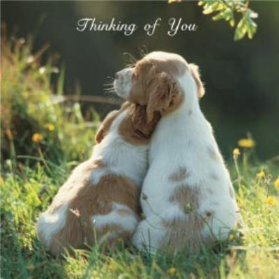 Cute Puppies Personalised Thinking Of You Card
