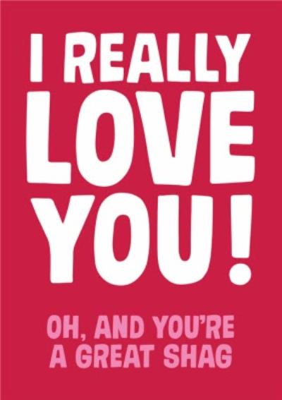 Rude Funny Typographic I Really Love You Card