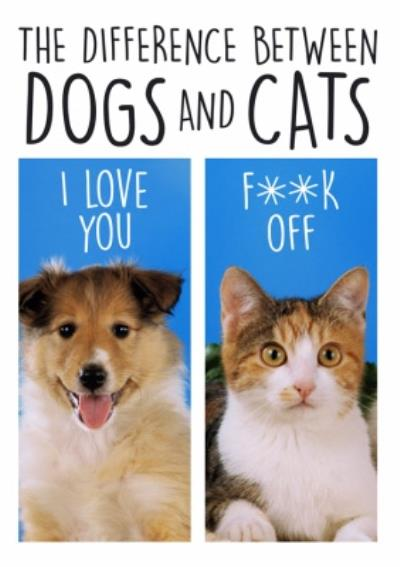 The Difference Between Dogs and Cats Funny Card