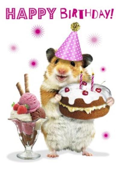 Cute Hamster With Cake And Ice Cream Sundae Birthday Card