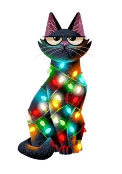 Folio Christmas lights cat Card