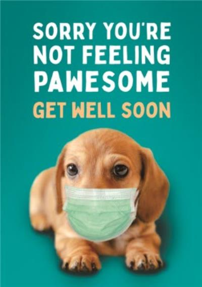 Dog Mask Covid Sorry You Are Not Feeling Pawesome Get Well Soon Card