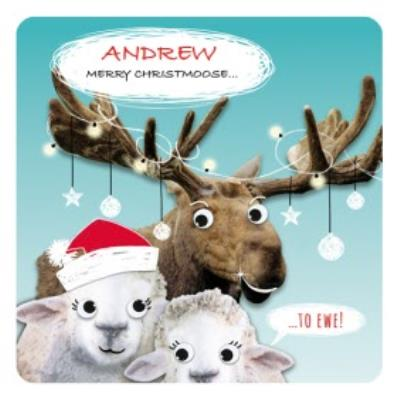 Personalised Merry Christmoose Funny Pun Christmas Card