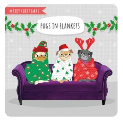 Funny Pugs in blanket Christmas card