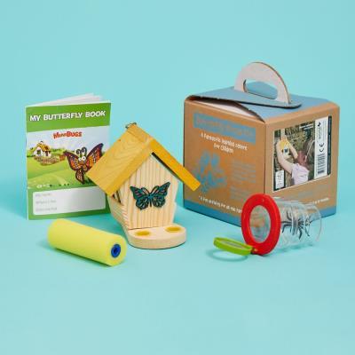 Mini Bugs Butterfly Kit