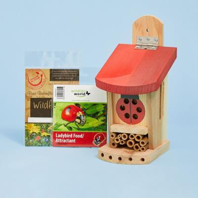 Kids' Ladybird House Gift Set