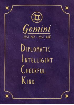 Funny Rude Horoscope Birthday Card
