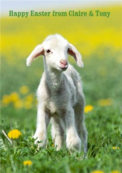 Little Lamb Personalised Happy Birthday Card