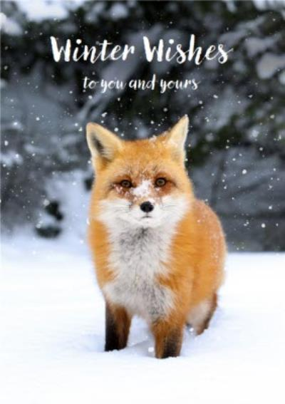 Christmas Card - Winter Wishes - Snow - Fox - To You And Yours