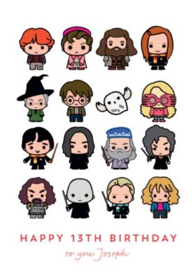 Harry Potter Ron Weasley Hermione Granger Luna Lovegood Dumbledore Hagrid Snape 13th Birthday Card