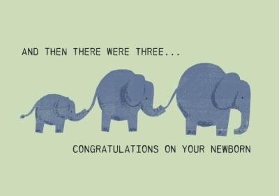 Katy Welsh Family of Elephants Illustration Congratulations On Your Newborn
