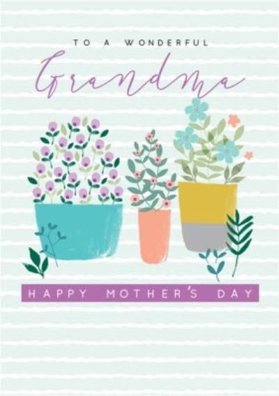 Illustrated Plants and Flowers To A Wonderful Grandma