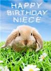 Limelight Personalised Niece Rabbit Birthday Card