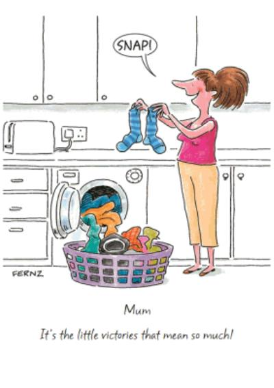Mother's Day Card - Funny Card - Little Victories - Laundry - Matching Socks