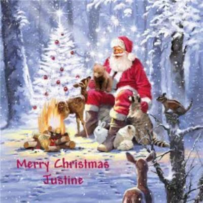 Woodland Santa Scene Personalised Christmas Card