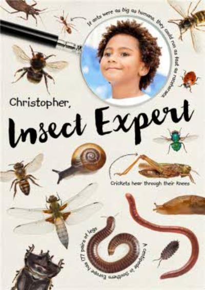 Insect Expert Photo Upload Card