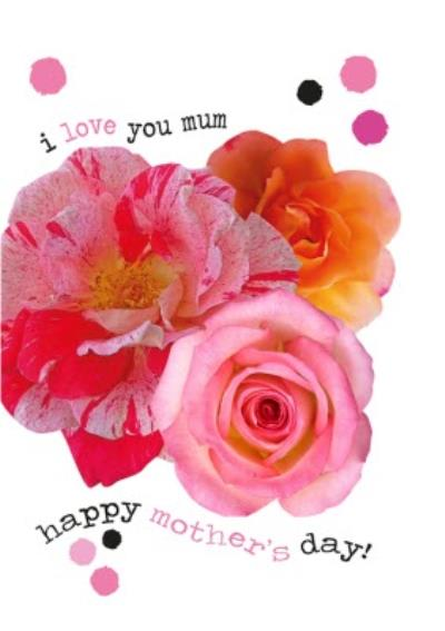 Roses Typographic I love You Mum Happy Mother's Day Card