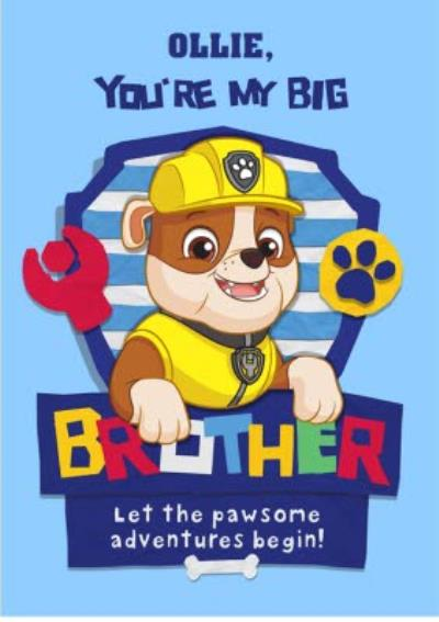 New baby - Brother - paw patrol