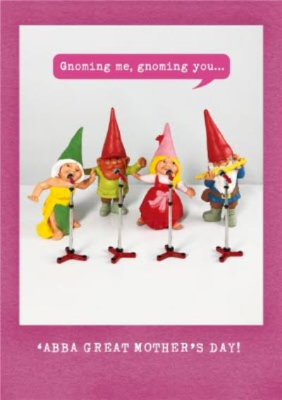 Gnoming Me And You Funny Abba Mother's Day Card