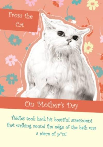 From The Cat On Mothers Day Card