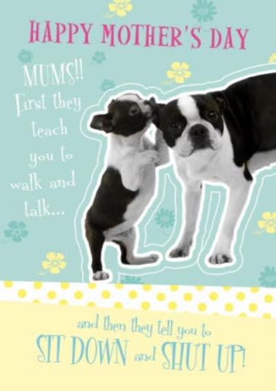 From The Dog On Mothers Day Card