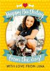 Happy Birthday From The Dog Yellow Photo Upload Card