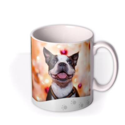 Merry Christmas From Dog Photo Upload Mug