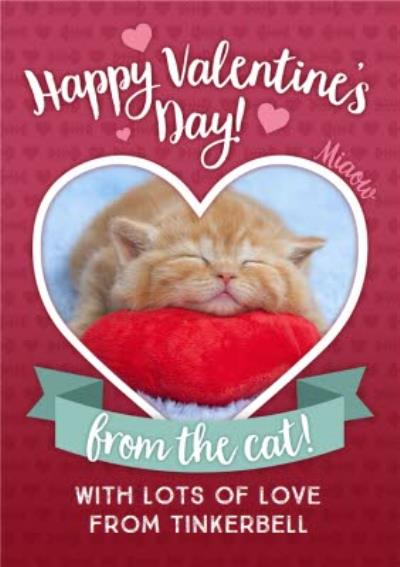 Happy Valentines Day From The Cat Photo Upload Card