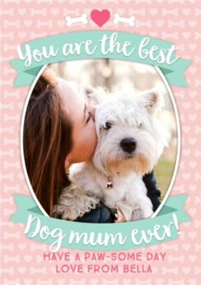 You Are The Best Dog Mum Ever Photo Upload From The Dog Mother's Day Card