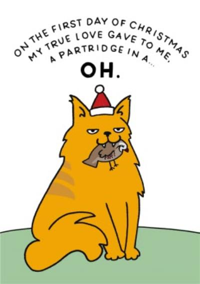 First Day Of Christmas Partridge And Cat Funny Christmas Card