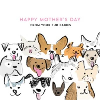 From Your Fur Babies Cute Mother's Day Card