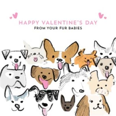 Cute From your Fur Babies Valentine's Day Card