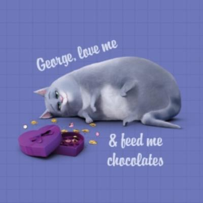 Universal Secret Life Of Pets Feed Me Chocolate Personalised Card