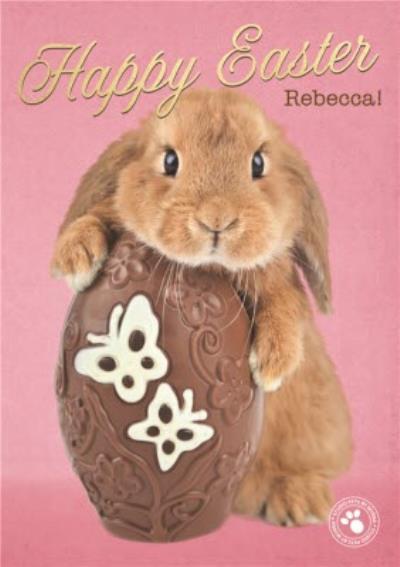 Adorable Bunny Hugging Chocolate Egg Easter Card