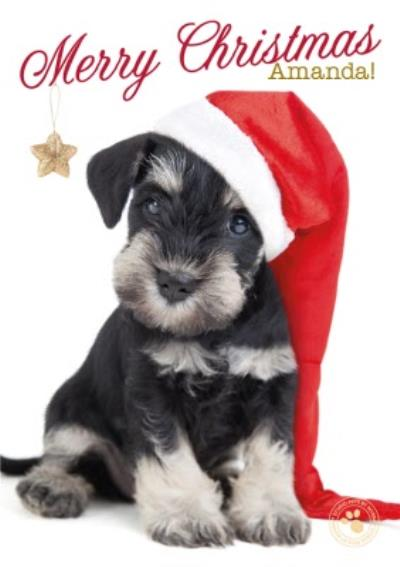Little Puppy With Santa Hat Personalised Merry Christmas Card